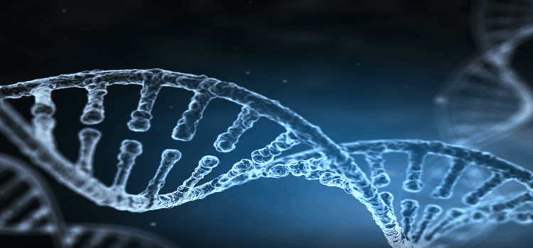 Realization, Reality and our DNA